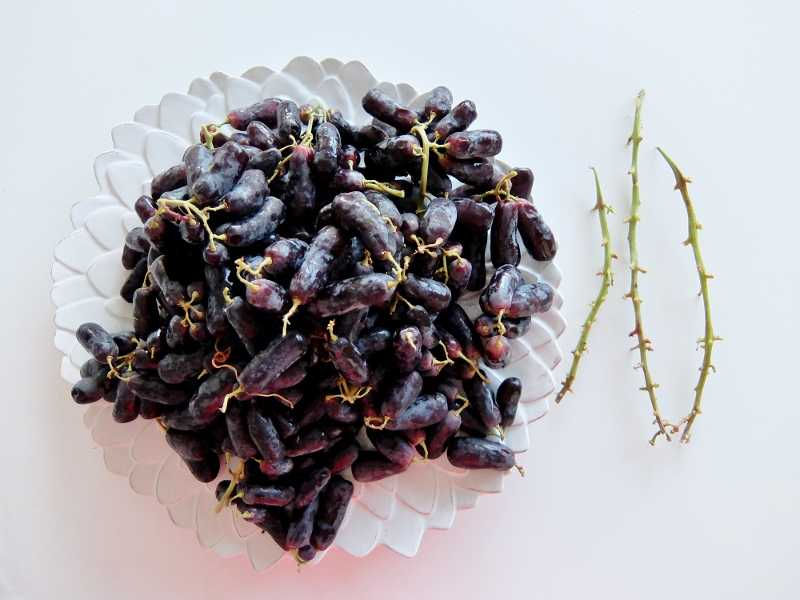 コストコ レポブログ ブラック シードレス グレープ 円 SweetSapphireGrapes スウィートサファイア ブドウ