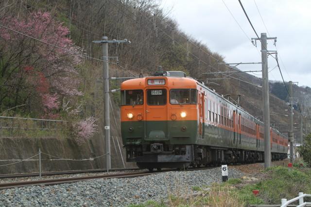 幻の春の雪 .しなの鉄道 169系 国鉄湘南急行色 6連
