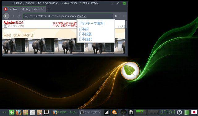 Bodhi Linux 5.0.0 Legacy のデスクトップ