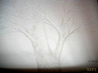 IMGP2042冬大木320.jpg