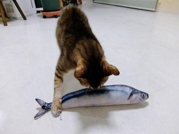 猫 ねこ おもちゃ 超リアル さんま けりぐるみ 蹴り