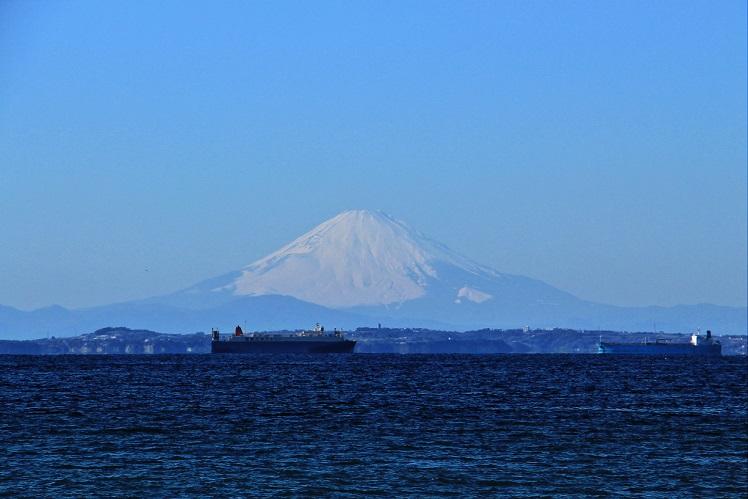 5.浦賀水道と富士.JPG