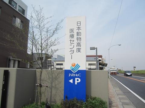 2012-0419-01.jpg