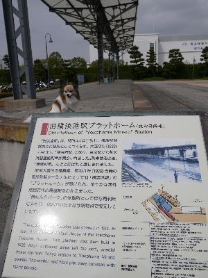 2012横浜1-16.JPG