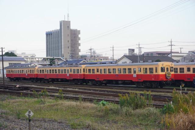 小湊鉄道 団臨 イルミネーション5