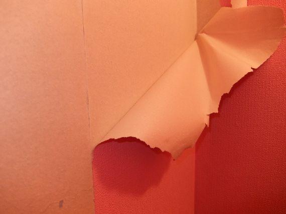 トイレのDIY セルフリノベーション リフォーム 壁紙
