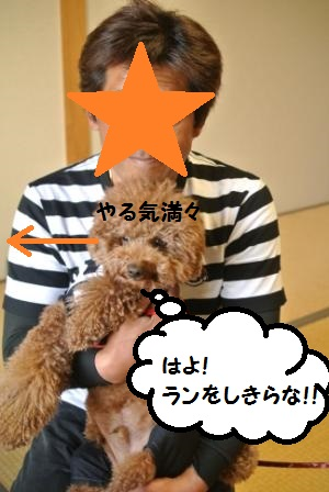 部屋到着のノア珀空 (10).JPG