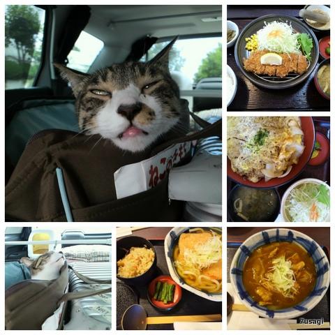 Collage_Fotor-006.jpg