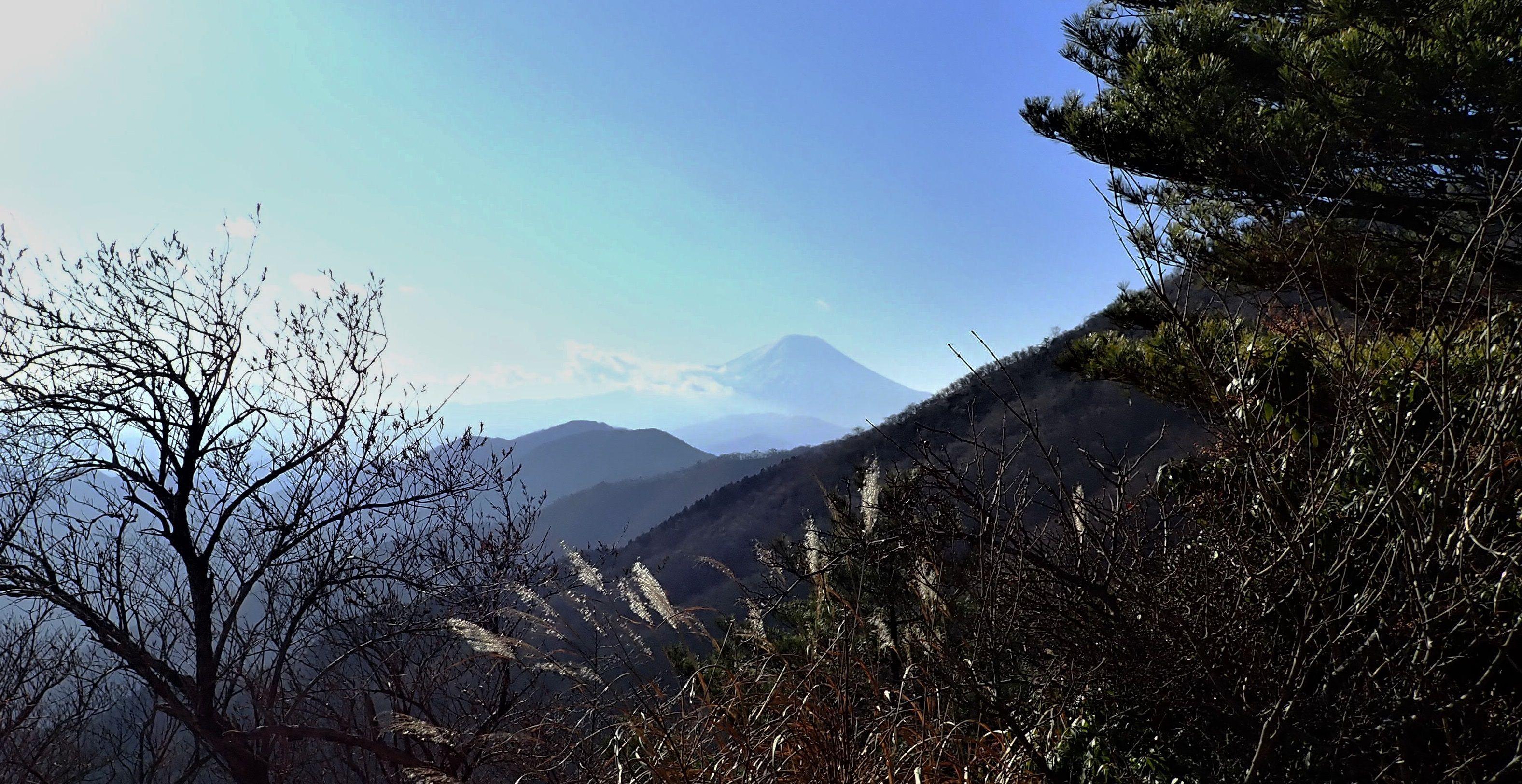 c2e4dc5cf0 塔ノ岳へ新年山行ー丹沢の表尾根から大倉尾根へー. 2019年1月5日( ...