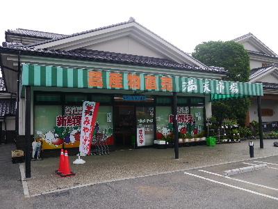 2012手賀沼14.JPG