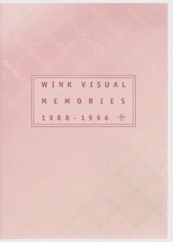 WINK VISUAL MEMORIES 1988-1996 DVD