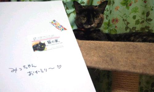 170611-mitsu4.jpg