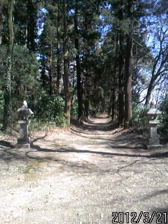 鷲神社の参道