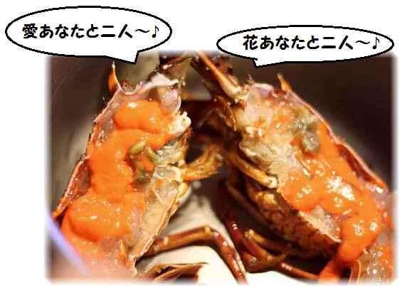 2016_0513_185019-IMG_9038 - コピー.JPG