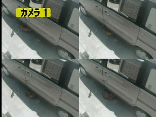 車の下で寝転ぶ猫