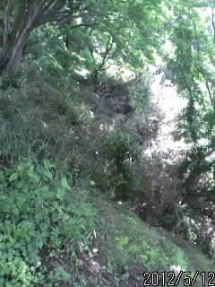 鹿沼城 堀切2