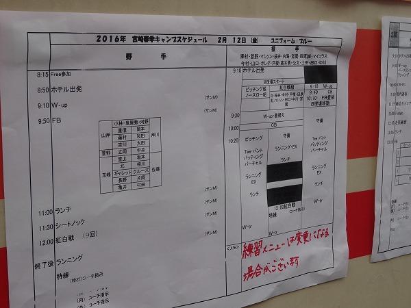 DSC09144.jpg