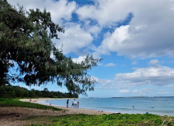 フキラウ ビーチ パーク(Hukilau Beach Park ライエ タートルベイ