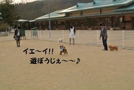 到着後のラン (98).JPG