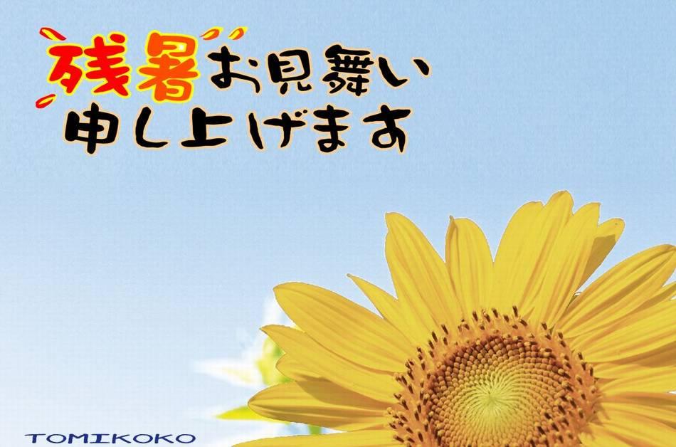 2014残暑お見舞いtomikokoさん