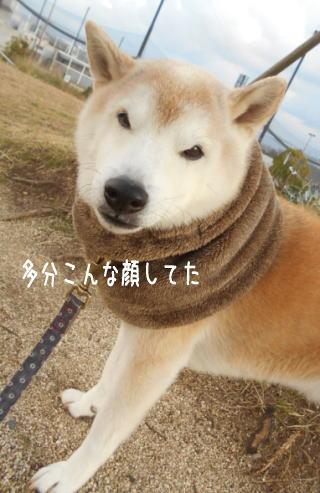 0109夕1.jpg