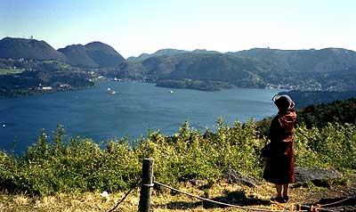スカイラインからの芦ノ湖の眺め