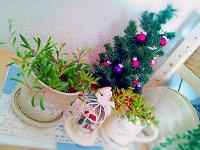 rblog-20131206085221-02.png