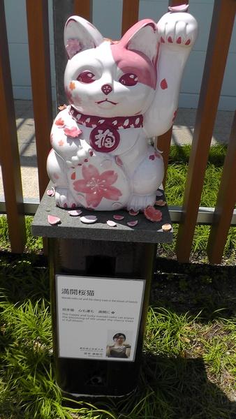 満開桜猫 招き猫ストリート@イオンモール常滑
