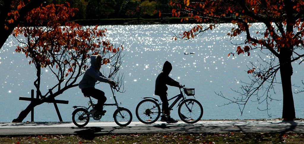 陽光のハーモニー_千波湖にて_2.jpg