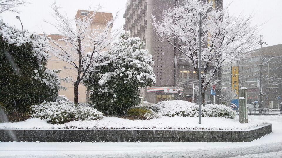 0214 奈良雪