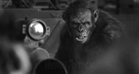 j14051001_Dawn_of_the_Planet_of_the_Apes_25.JPG