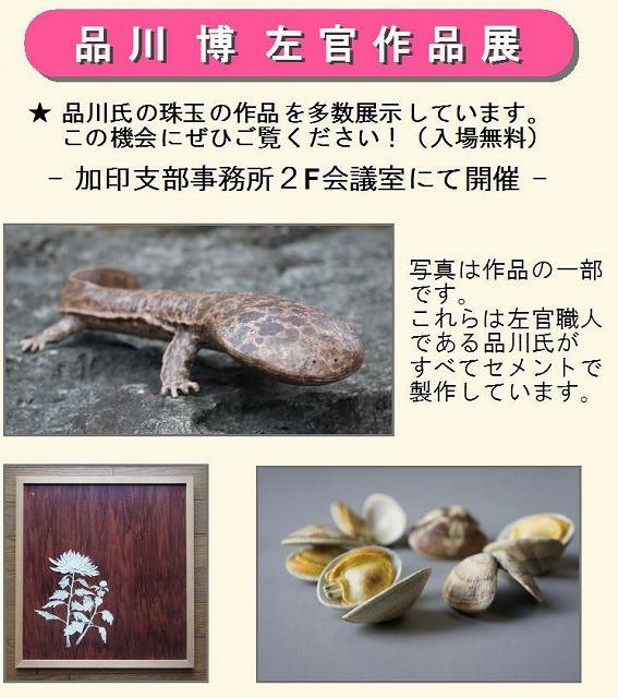 dshinagawa cut.jpg