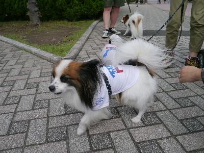 2012八景島オフ会14.JPG