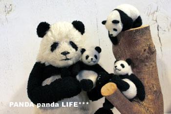 Makikoさんのパンダちゃんたち