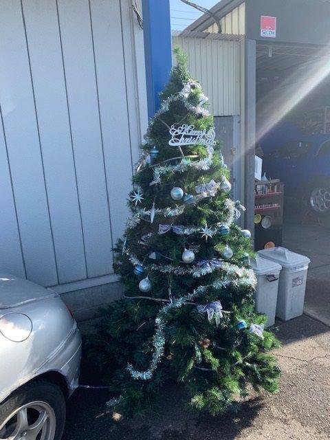 レイズ クリスマス ツリー 12月 キャンペーン