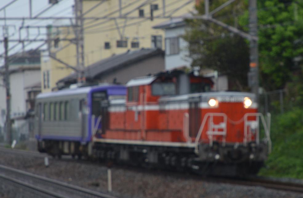 DSC_4161.JPG