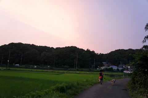 2012-0731-16.jpg