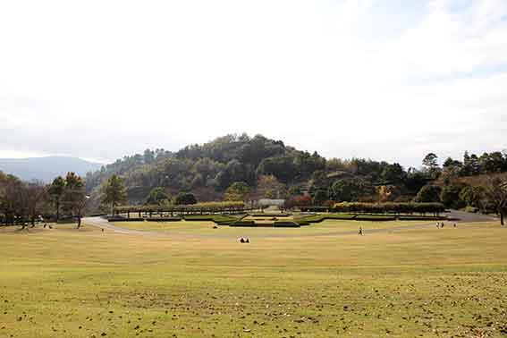 神山森林公園の「紅葉祭り」-6♪