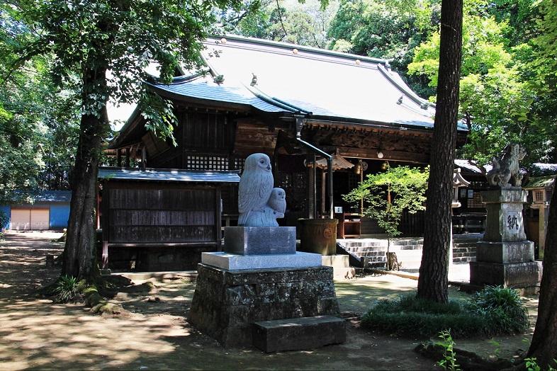 1.野木神社境内.JPG