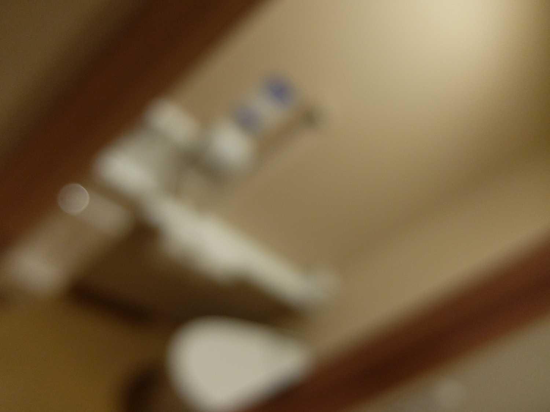 国民宿舎 湯来ロッジ 広島 こんにゃく オオサンショウウオ