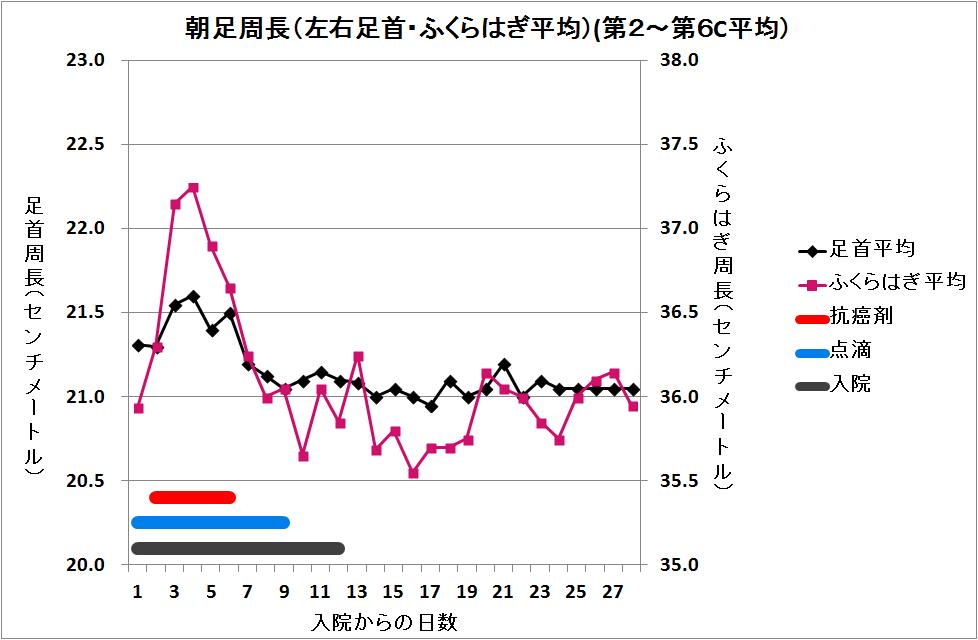 32-朝足周長(足首・ふくらはぎ平均).png