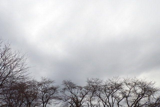 天気 鯖江 の 明日