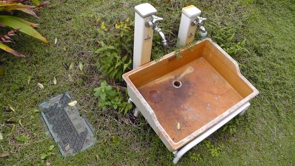 ガーデンパン 井戸 量水器 立水栓 シダ イワダレソウ