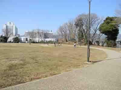 神奈川県伊勢原市下糟屋のR246の脇に城趾公園として整備された丸山城 ...