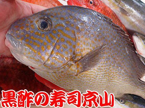 港区 東麻布 美味しい魚 宅配寿司