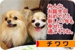 tanjoukai banner.JPG