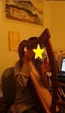 harpi.jpg