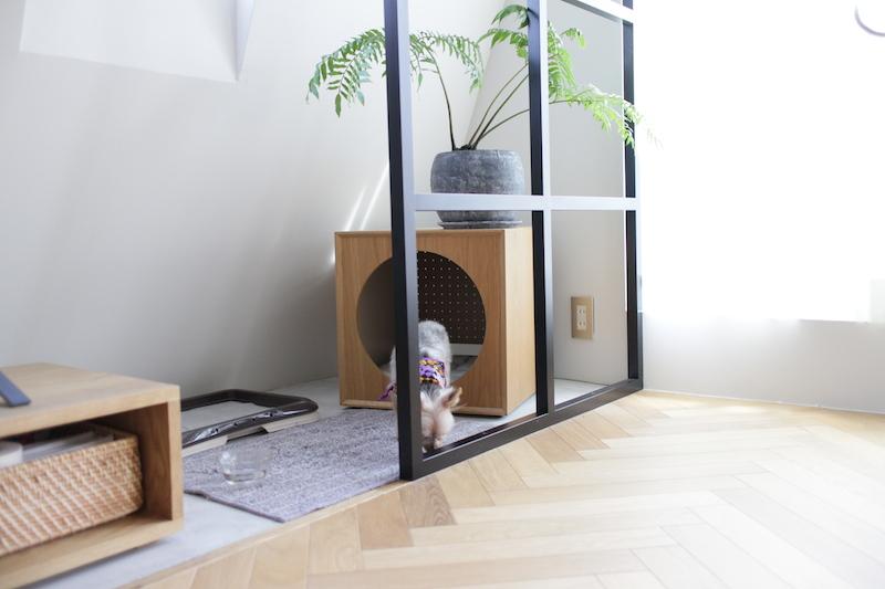 犬小屋3.JPG