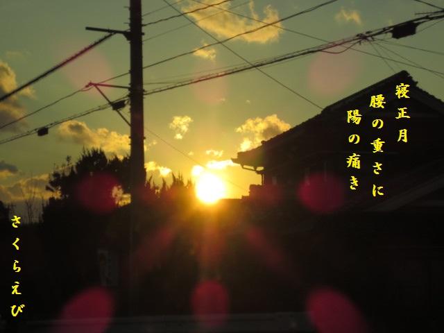 IMG_3030okblog46.jpg