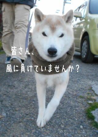 0111朝.jpg